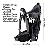 Luvdbaby Premium Baby Backpack Carrier for Hiking with Kids - Carry Your Child...