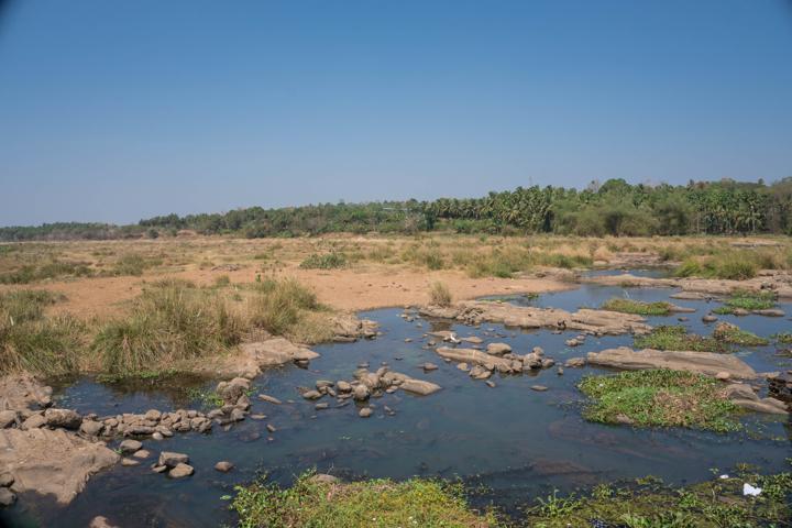 bharathapuzha nila