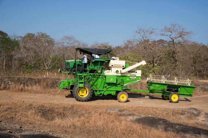 paddy cultivator