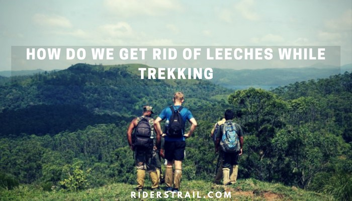 How do we get rid of leeches while trekking