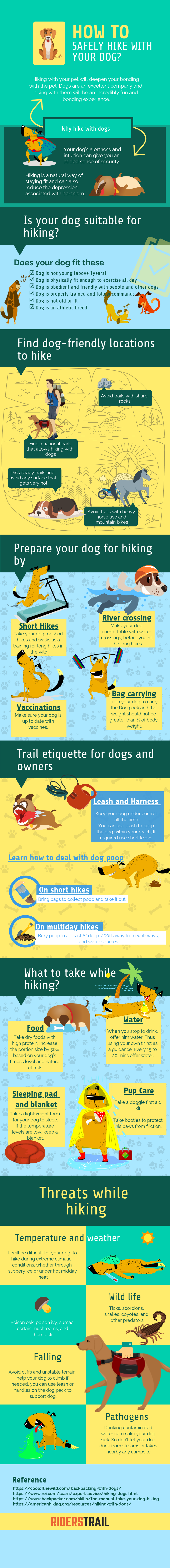 how to safely hike with your dogs