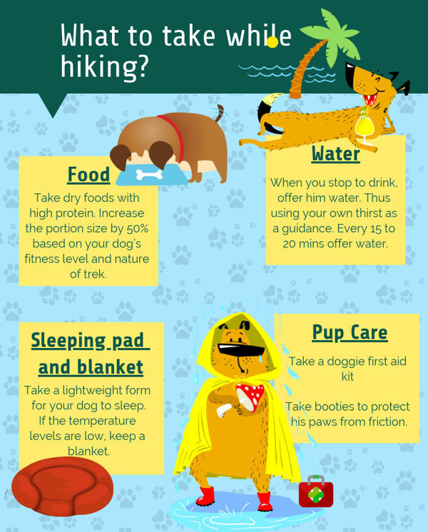 what to take while hiking